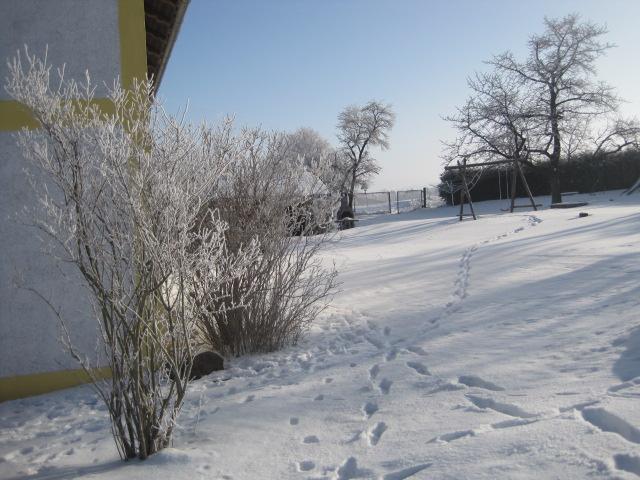 Winter 2016/17